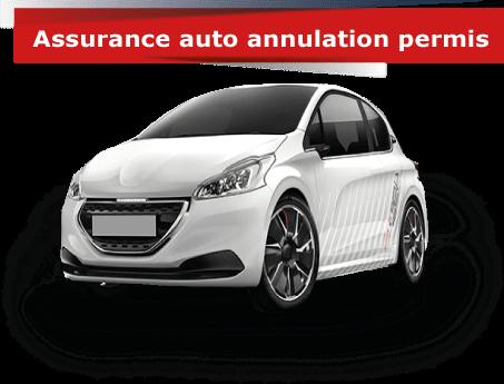 assurance auto annulation de permis